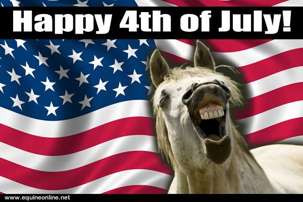 Funny Happy 4th of July Images